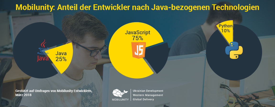 Java Developer Anteil