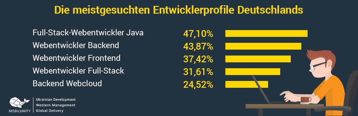 Java EE Entwickler