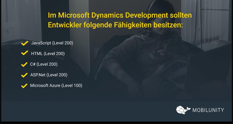 microsoft dynamics developer